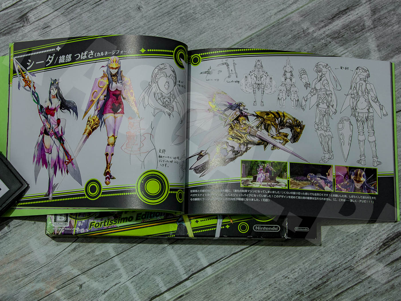 Tokyo Mirage Sessions #FE Fortissimo Edition 2015 - Artbook - Caeda